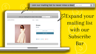 Expand your mailing list with our Subscribe Bar