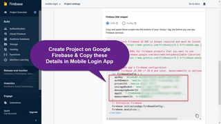 Copy Firebase Project Details to Login App