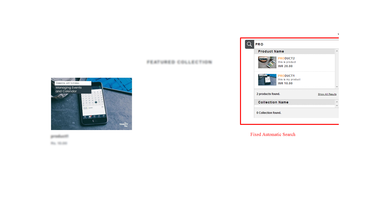 Frontend view of automatic fixed search
