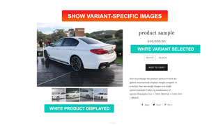 Variant Images, multi variant images & video gallery