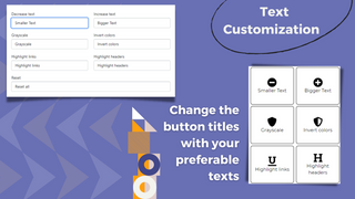Accessibility Toolkit with Text Customization