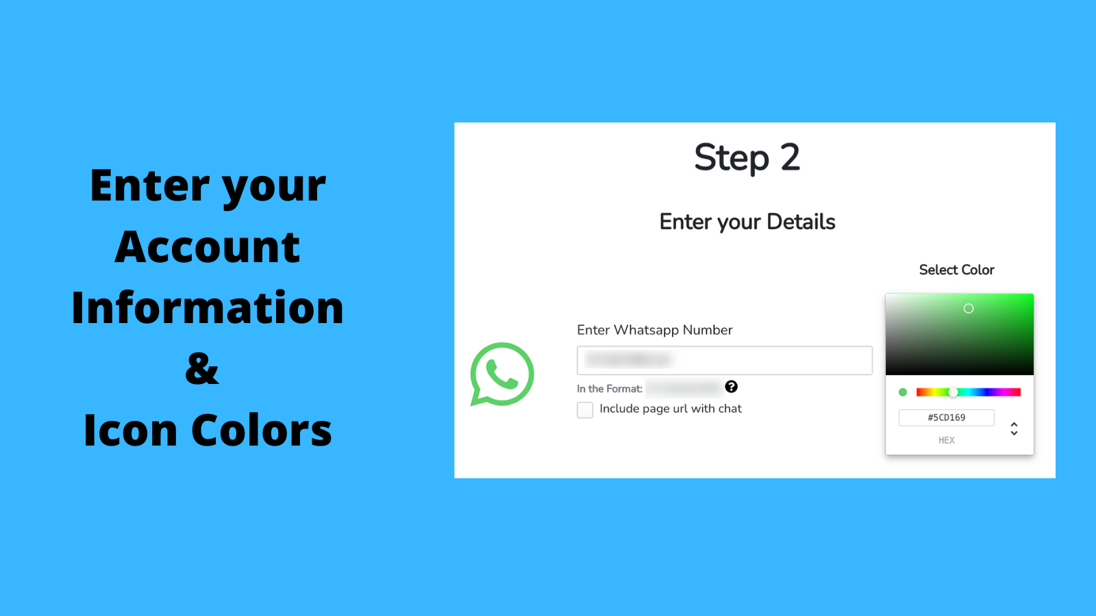 Enter your Account Information and Icon Colors