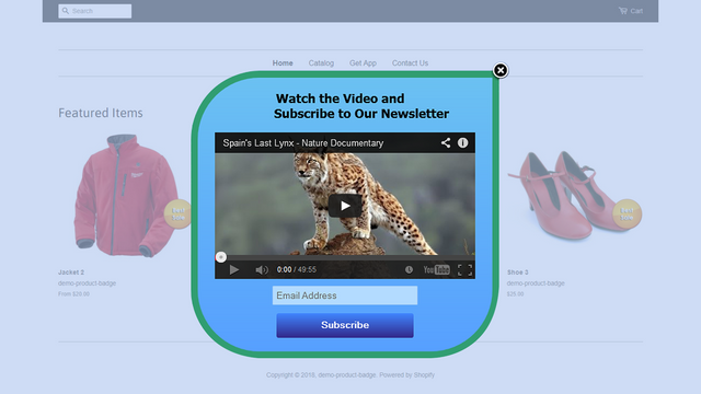 ConstantContact popup with video content