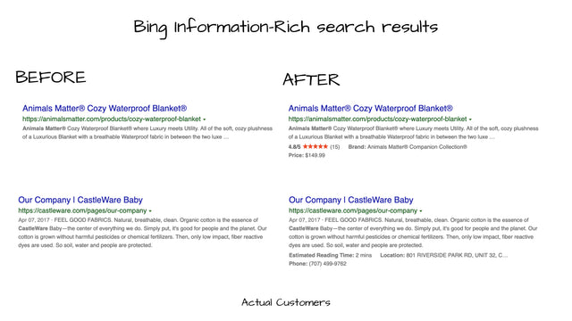 Example Bing Information-Rich results from actual customers