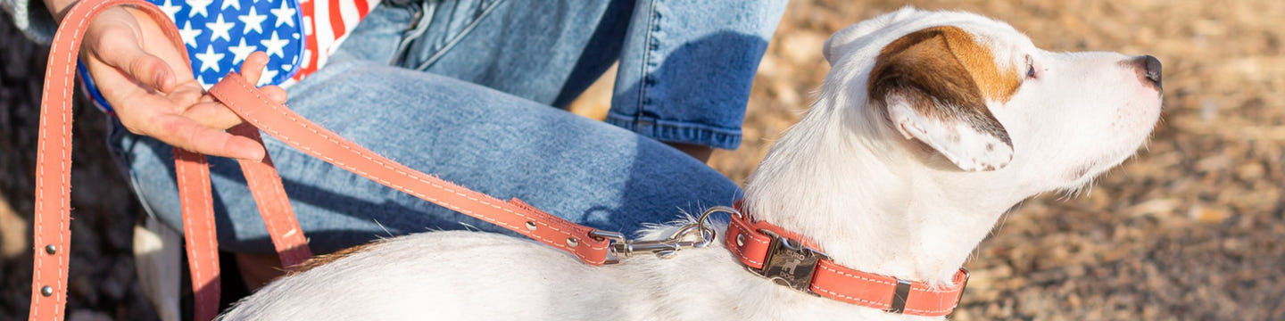 Euro-Dog Collars and Leads