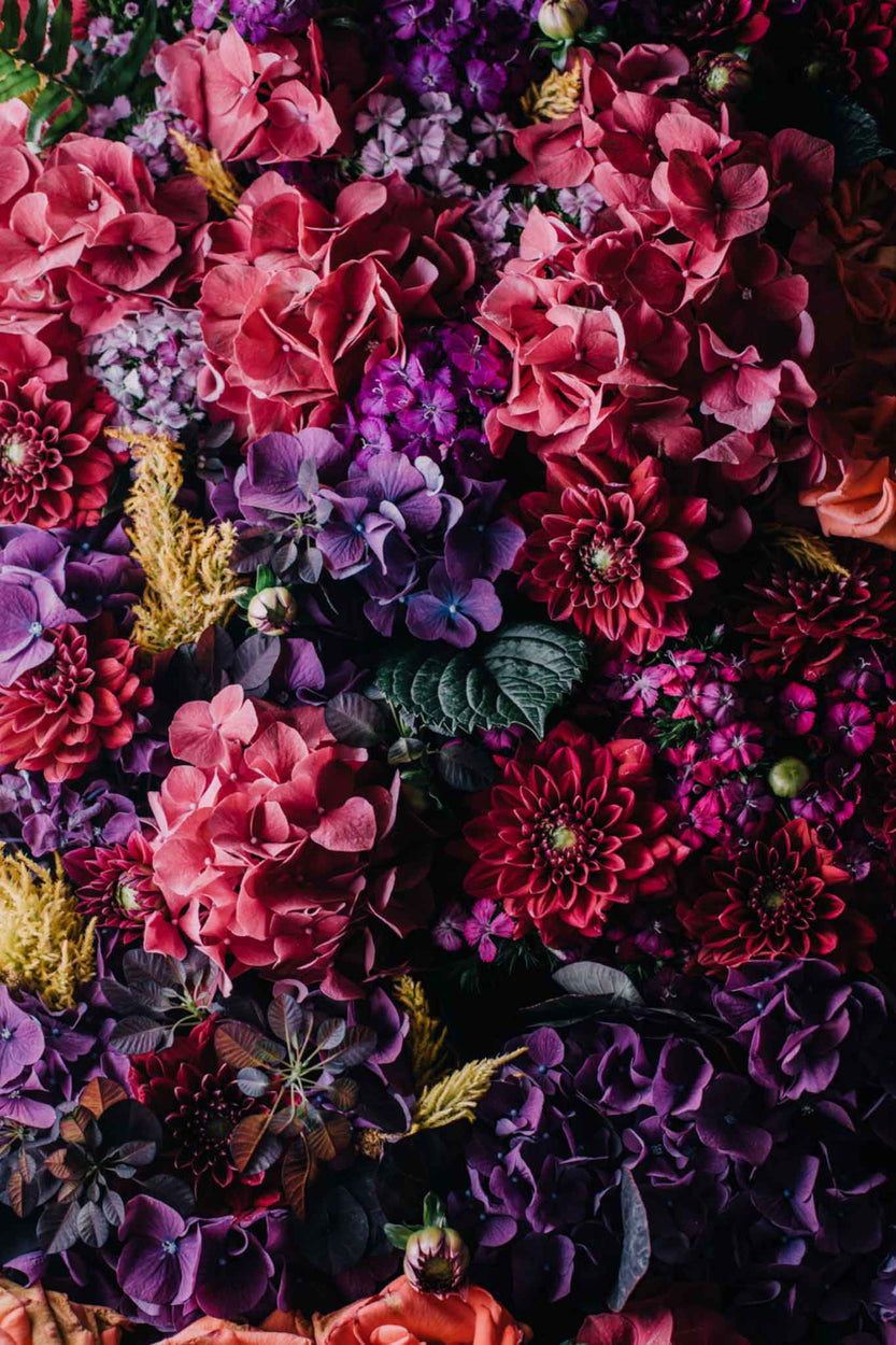 A large bouquet of red, pink, and purple flowers - Highly optimised image at double viewed size for retina screens (625px tall @2x)
