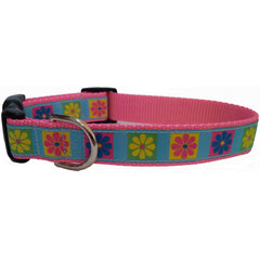 Colorful Daisies Dog Collar