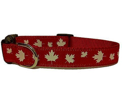 Maple Leafs Dog Collars