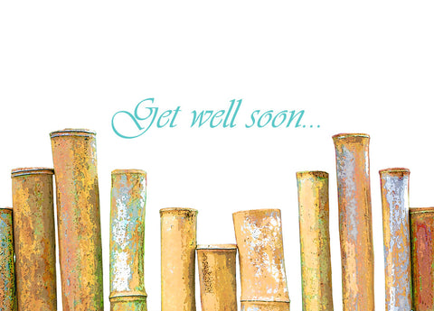 Bamboo Get Well