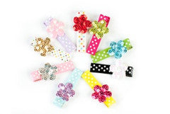 Sparkle Hair Clips