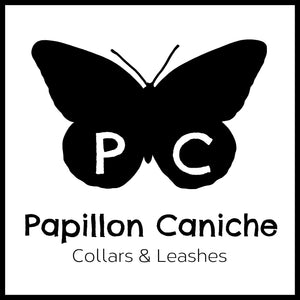 Papillon Caniche Collars and Leashes