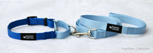 Martingale Collar & Leash Set (Color Options) by Papillon Caniche