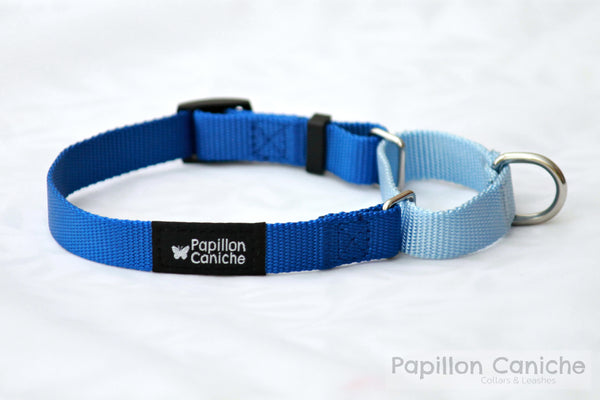 Pack of 10 Summer Skye Adjustable Martingale Dog Collar by Papillon Caniche
