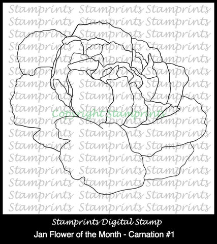 January Flower of the Month - Carnation #1 (TLS-1712) Digital Stamp.