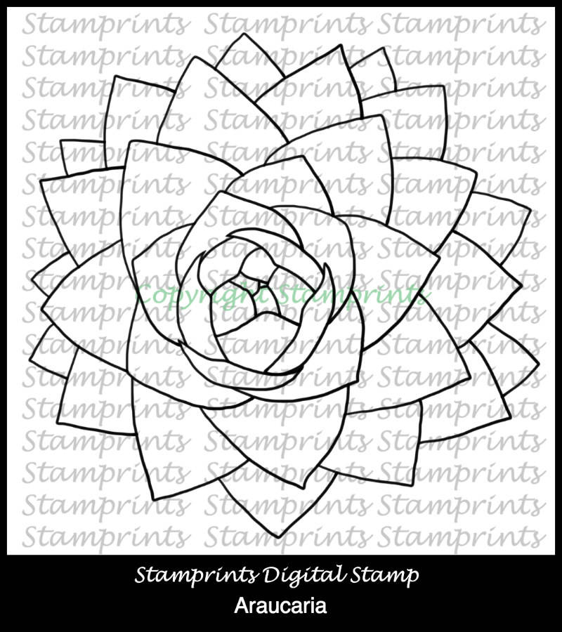 Araucaria (TLS-1815) Digital Stamp. Cardmaking.Scrapbooking