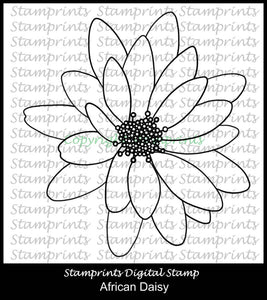 African Daisy (TLS-1730) Digital Stamp. Cardmaking.Scrapbooking