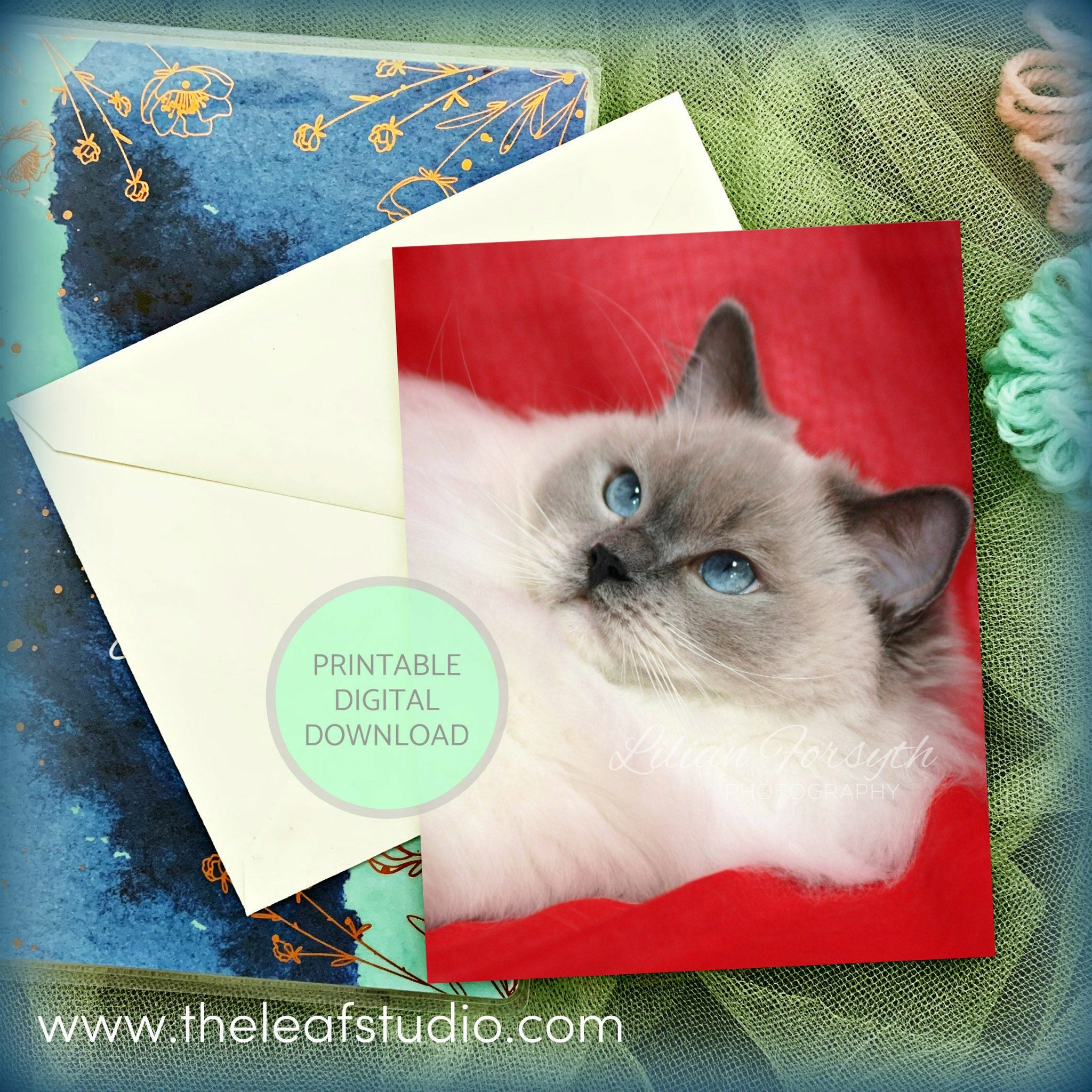 Printable Ragdoll Cat Photography Greeting Card (Digital Instant Download) by The Leaf Studio - 4.25 x 5.5 Frameable Art