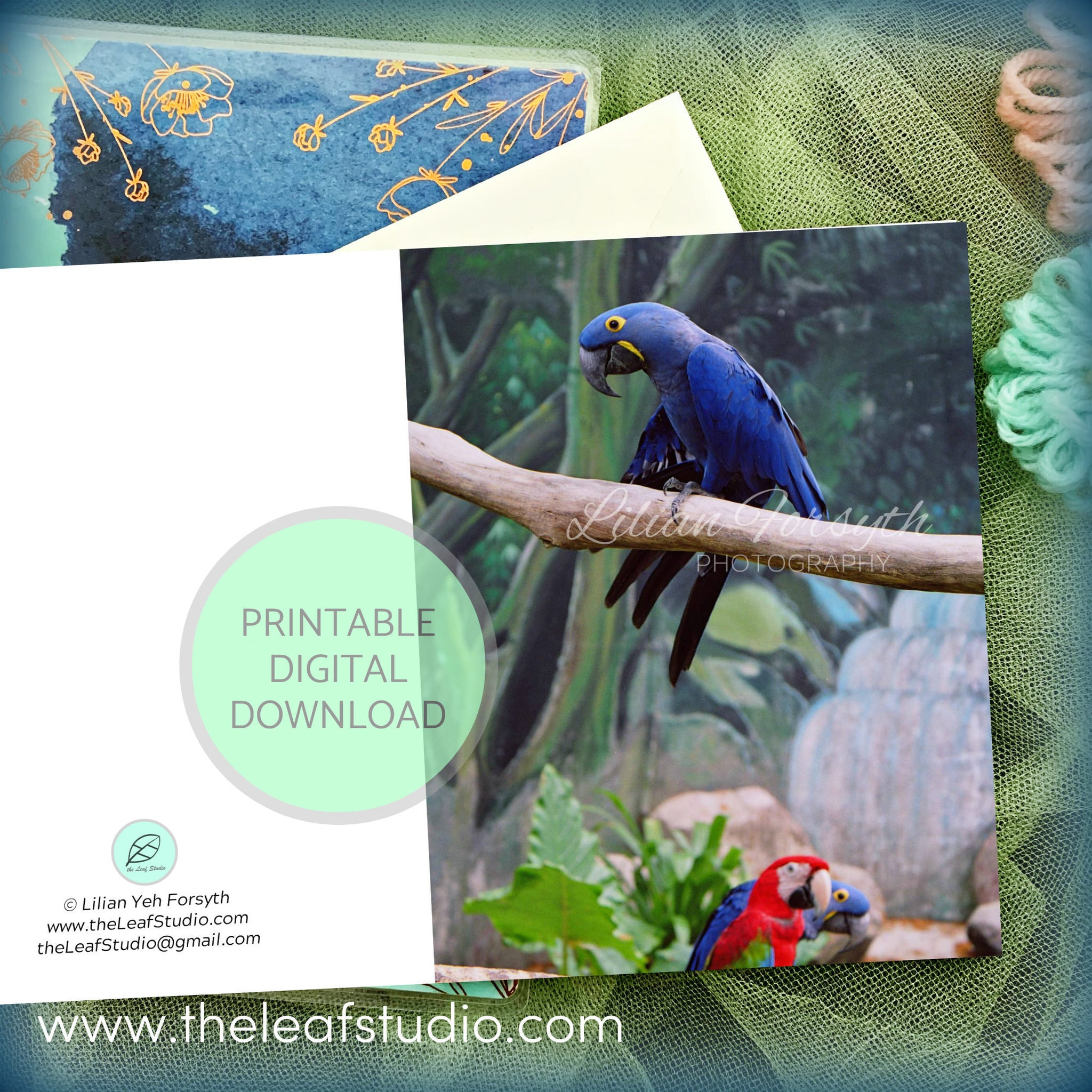 Printable Arara Azul/Blue Macaw Photography Greeting Card (Digital Instant Download) by The Leaf Studio - 4.25 x 5.5 Frameable Art