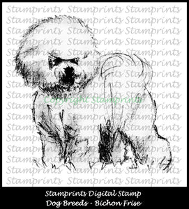 Digital Stamp: Dog Breeds - Bichon Frise (by Stamprints)