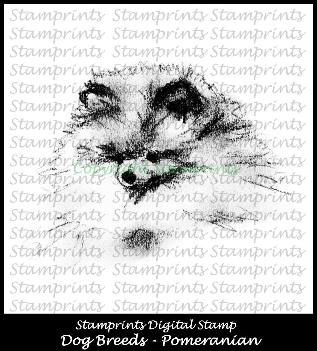 Digital Stamp: Dog Breeds - Pomeranian (by Stamprints)