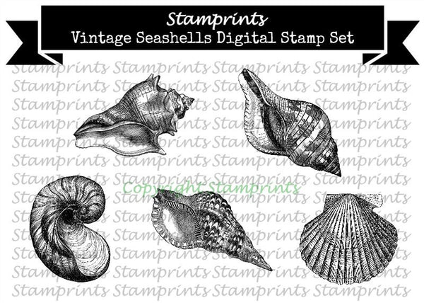 Digital Stamp Set - Vintage Seashells (by Stamprints)