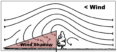 What is a Wind Shadow and how it impacts Kites