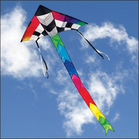 Champion Delta Kite, Into The Wind - Great Canadian Kite Co