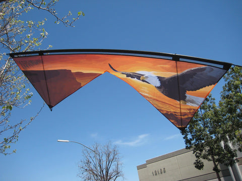 Rev 1.5 Micro Light - Revolution Kites - Great Canadian Kite Company