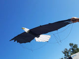 Eagle - Revolution Kites - Great Canadian Kite Company