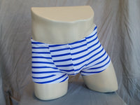 Blue & White Stripe Swim Trunk