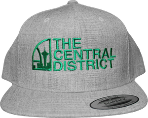 The Central District CD Snapback