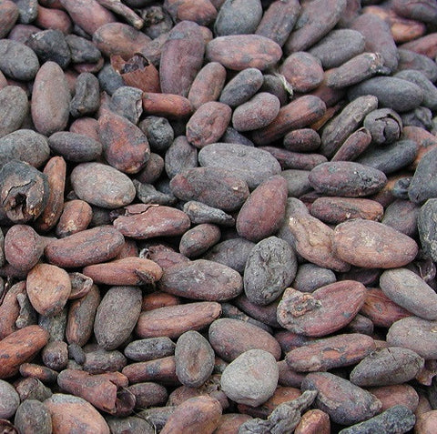 Cocoa Beans | Chocolate Alchemy