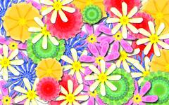 Colourful Flower Pattern