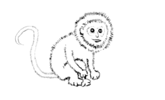 Monkey Outline