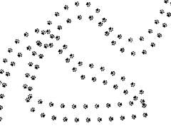 Pawprint Background
