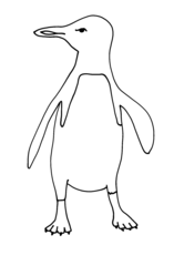 Penguin Outline