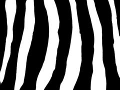 Simple Zebra Pattern