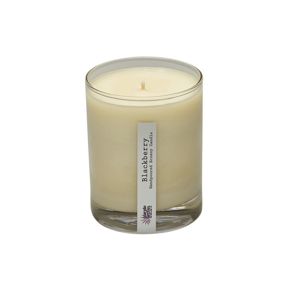 Blackberry soy candle - Purple Urchin