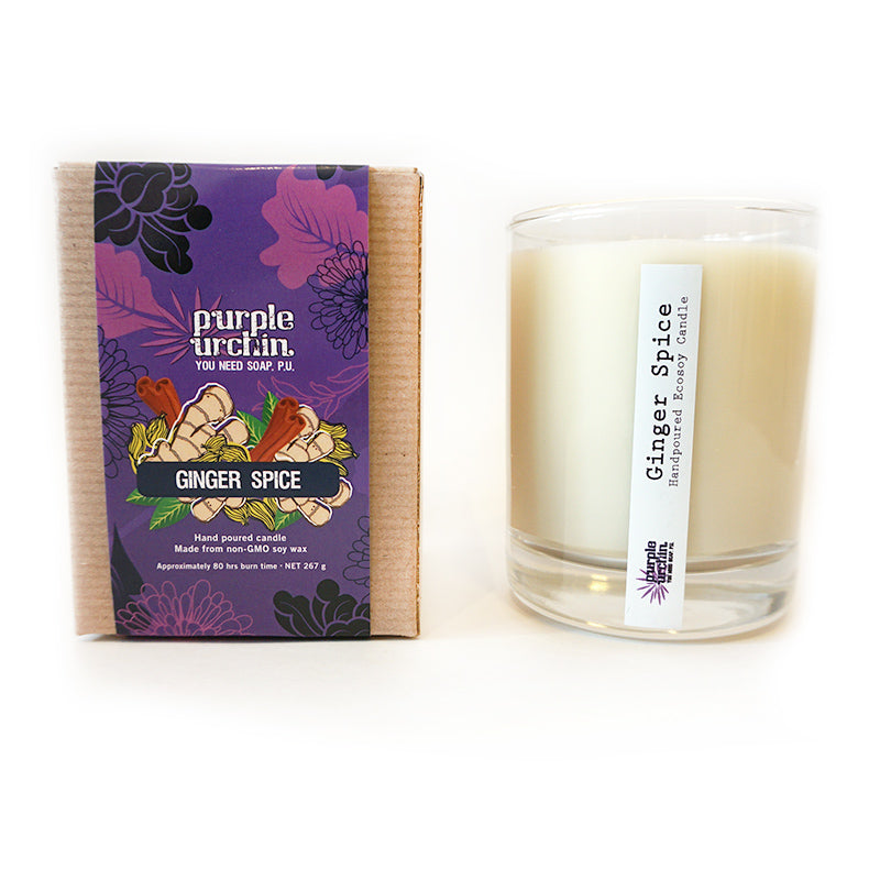 Ginger Spice Soy Candle - Purple Urchin
