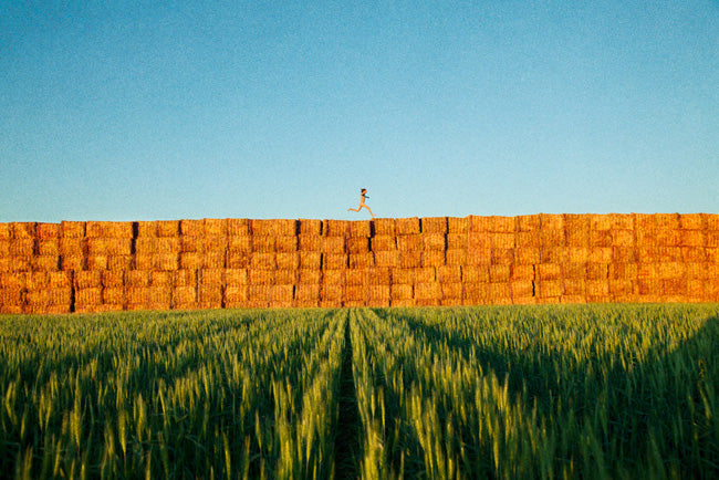 2012-haystacks_grassy-reach_out_im_right_here-web-sm