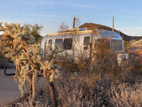 Our unhooked campsite at Organ Pipe National Monument