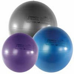FitterFirst Exercise Ball Chair
