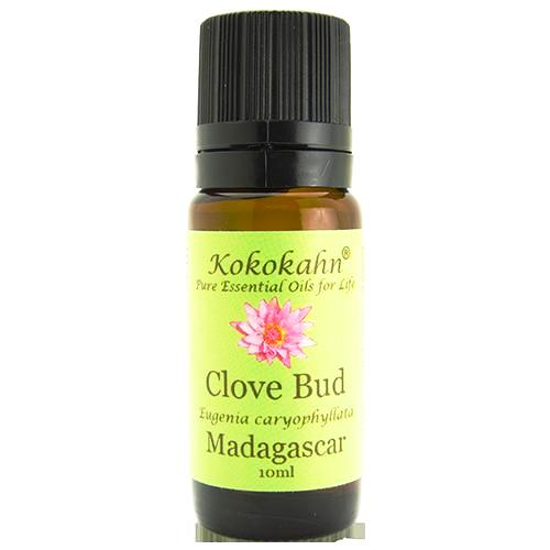 Clove bud essential oil - 10% OFF