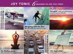 Joy Tonic, Organic - 15% OFF