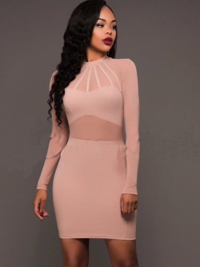 Long Sleeve See-Through Women's Bodycon Dress