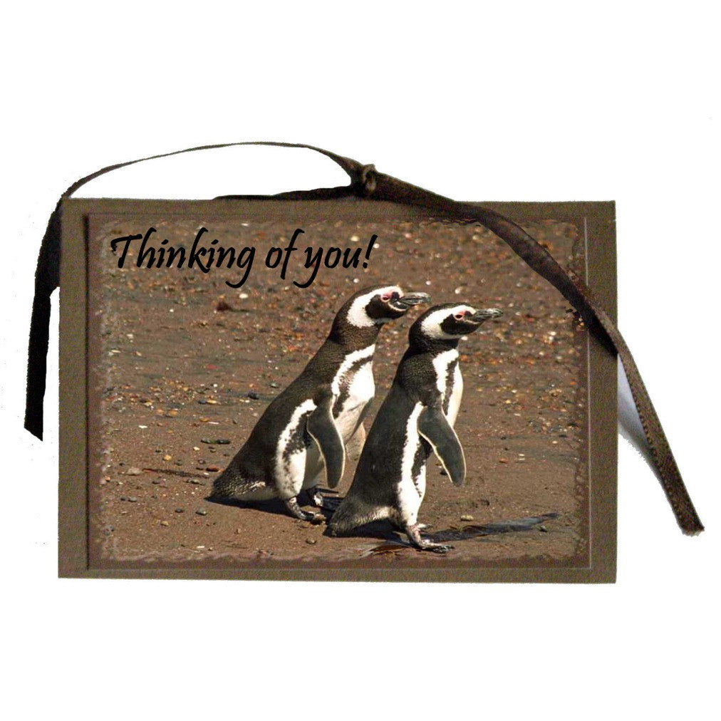 Thinking of You Cards - Penguins