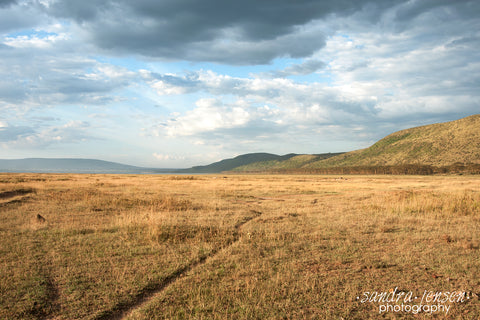 Print - Africa - Lake Nakuru National Park
