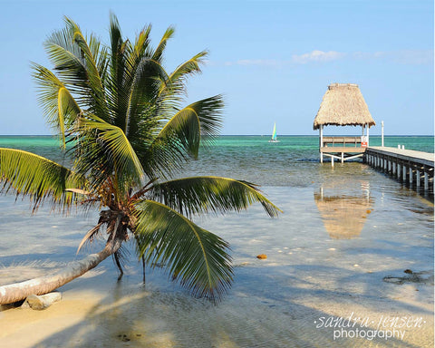 Print - Belize Ambergris Caye Beach