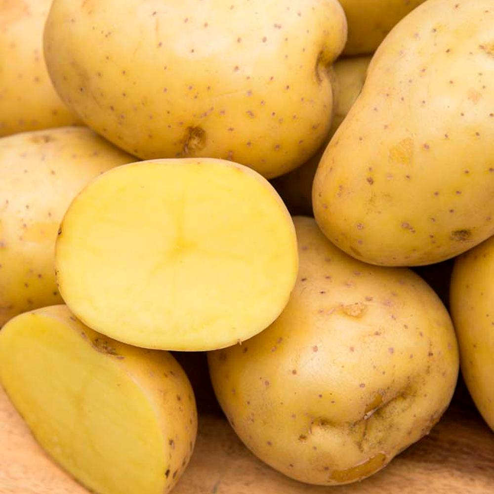 2 lb Organic Yukon Gold Potatoes *