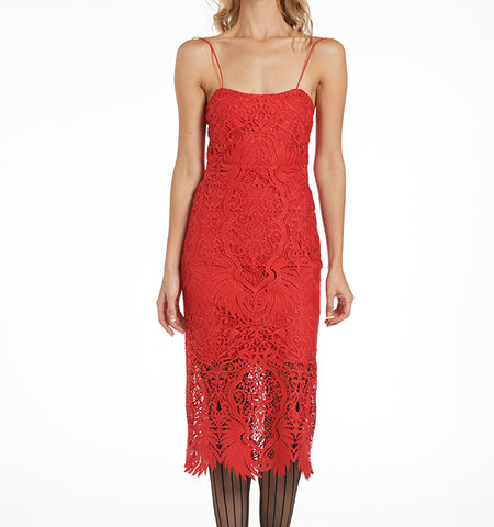 Varon Lace Dress